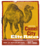 Camel City Indoor Mile
